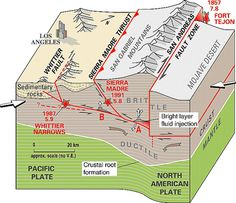 Crustal structure and tectonics from the Los Angeles basin to the Mojave Desert, southern California