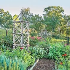 Tip from P. Allen Smith's Secret Veggie Garden: Punctuate your garden with colorful leaves