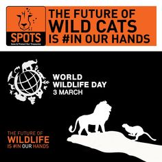 The future of wild cats is #inourhands!