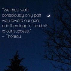 We must walk consciously only part way toward our goal, and leap in the dark to our success.  Henry David Thoreau