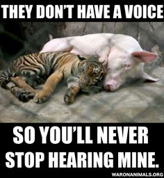 Most people aren't aware of their 'voices', so you will never stop hearing mine, on their behalf.