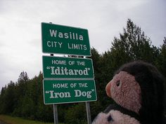 The Iditarod and Iron Dog Races, if you don't know about this, check them out this winter.  Exciting man against the wild (and women, too). Wasilla, Alaska