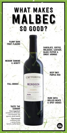 What should you look for in a great Malbec wine? This helps explain why a quintessential Malbec will taste so good! What should you look for in a great Malbec wine? This helps explain why a quintessential Malbec will taste so good! Wine And Liquor, Wine And Beer, Wine Drinks, Beverages, Wine Infographic, National Drink Wine Day, Wine Facts, Wine Lovers, Malbec Wine