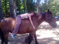 El calor corporal del caballo aporta unos benefícios a las personas con problemas físicos fortaleciendo su musculatura.
