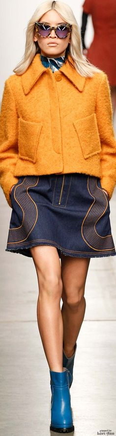 Color fashion Glam / Karen Walker Fall 2015 RTW