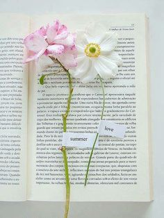 book and flowers!