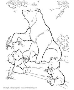 Wild Animal Coloring Pages | Wild bears eating berries Coloring Page and Kids Activity sheet  | HonkingDonkey