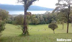 Botanical Garden View, Lake, Mountain