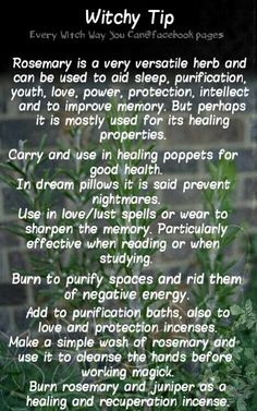 Herbal Magick | Rosemary - Spellwork