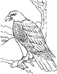 Unique Eagle Coloring Book 20 Eagle Coloring Sheet can