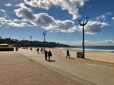 Sydney Beaches Archives - Seeing Sydney Sydney Beaches, Pacific Ocean, Palm Beach, Coastal, Surfing, Scenery, Water, Outdoor, Beautiful