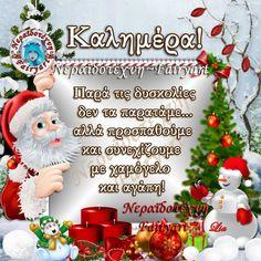 Καλημέρα Christmas Wishes, Christmas Ornaments, Beautiful Pink Roses, Xmas Decorations, Good Morning, Beautiful Pictures, Holiday Decor, Paracord, Irene