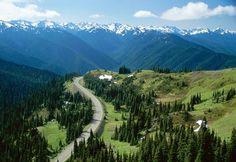 Hurricane Ridge, Olympic National Park  State of Washington