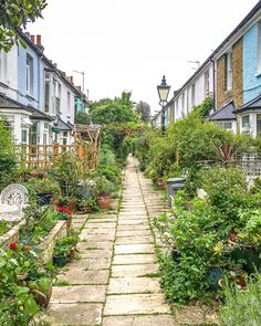 A beautiful lane with overgrown gardens and colorful houses in south London's Peckham. #london #peckham #garden #houses