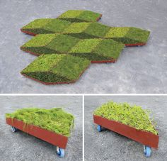 Murry Legge's Rolling Fractal Garden