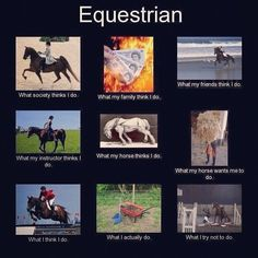 Equestrian interpretations