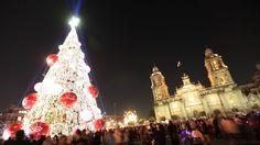 Mexico City Christmas tree at Zocalo.