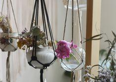 Plant Hanger, California, Plants, Decor, Decoration, Plant, Decorating, Planets, Deco