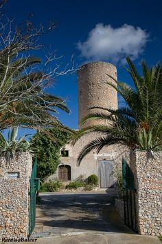 Villa Fermina - Molí de Felanitx, Island of Mallorca, Spain. Villas, Palm Tree Island, Madrid, Heaven On Earth, Palm Trees, Places To Visit, Adventure, Mansions, Country
