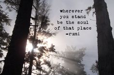 Tree Photo with Rumi Quote