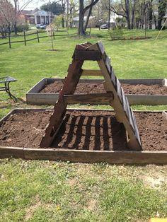 39 Best DIY Garden Trellis Ideas To Consider[Listicles] Backyard Garden Landscape, Modern Backyard, Garden Landscaping, Balcony Gardening, Garden Modern, Modern Gardens, Modern Landscaping, Garden Trellis, Garden Beds