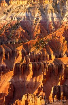 Afternoon light the Cedar Breaks Amphitheater from Point Supreme, Cedar Breaks National Monument, Utah USA / © Russ Bishop ~ Click image to purchase a print or license