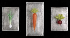 Art Glass, 'Three Single Vegetables', wall sculptures composed of hand blown glass vegetables and stainless steel. www.jenviolette.com Soft Layers, Glass Wall Art, Wall Sculptures, Hand Blown Glass, Three Dimensional, Contemporary Art, Pottery, Fine Art, Ceramics