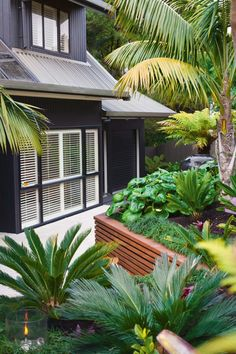 Houses & Gardens Article: Auckland tropical garden - NZ House & Garden - love th. - Houses & Gardens Article: Auckland tropical garden – NZ House & Garden – love the charcoal hous - Tropical Garden Design, Garden Landscape Design, Tropical Plants, Auckland, Home Landscaping, Tropical Landscaping, Terraced Landscaping, Terra Cotta, Charcoal House