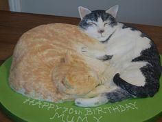 Sleeping Cats cake