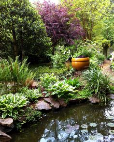 images about Small ponds on Pinterest Small Ponds