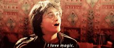 Feliz exploração, fãs de Potter! | J.K. Rowling revelou novidades sobre a Família Potter junto com a nova imagem do Pottermore