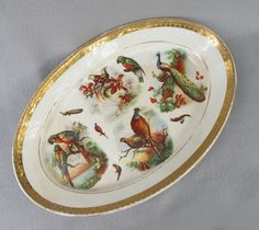Dresden Platter with Parrot Pheasant Peacock Bird of Paradise offered by Antique Beak. Vintage Pottery, Vintage Antiques, East Liverpool, Peacock Bird, Hand Painted Plates, Colorful Birds, Pheasant, Antique Items, Ruby Lane