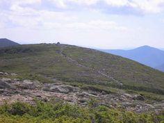 Guyot yaitu gunung di dasar laut yang bentuknya serupa dengan gunung laut tetapi bagian puncaknya datar.