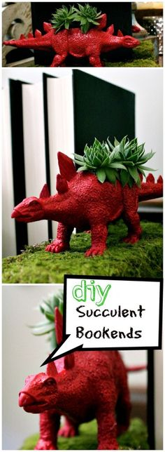 dino bookends with succulents