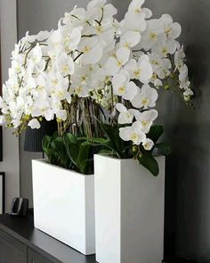 Use orchids, flowers and plants to decorate your home. Thirty five gorgeous ways to decorate with orchids, flowers, and plants. Feed your design ideas now. Orchid Flower Arrangements, Orchid Centerpieces, Artificial Flower Arrangements, Flower Vases, Artificial Flowers, Flower Pots, House Plants Decor, Plant Decor, Indoor Orchids
