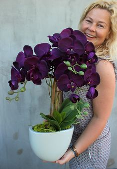 sztuczne storczyki z pracowni tendom. Indoor Orchids, Artificial Orchids, Orchids Garden, Orchid Plants, Moth Orchid, Home Flowers, Exotic Flowers, Beautiful Flowers, Orchid Flower Arrangements