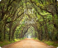 "Just Breathe Outdoor Woods Quote  *7.75"" x 9.25"" - 1/4"" thick Manufactured By Atomic Market *Washable *Rubber Bottom *Anti Skid *Printed In The USA and Manufactured by Atomic Market  FREE SHIPPING On All Orders  ORDER ONLINE Our website is fast and secure with a no hassle returns policy SEND A GIFT Need it shipped to friends address? No problem! We can handle it!"
