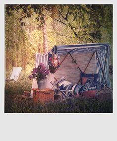 Meet me in the Blue Tent Outside Living, Outdoor Living, Outdoor Decor, Outdoor Ideas, Out Of Office Reply, Bird Bath Garden, Chicken Garden, British Country, Outdoor Entertaining