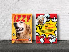 Custom therapy dog trading cards printed for Izzy.