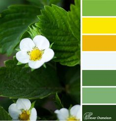 Strawberry Vines color scheme by Clever Chameleon