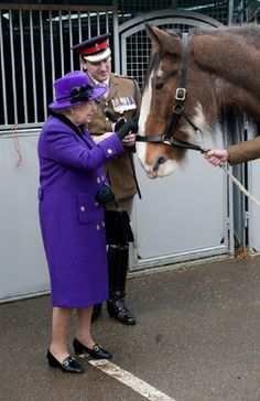 Queen Elizabeth II looks at a horse as she meets members of the Household Cavalry at Combermere Barracks on 26 Nov 2012 in Windsor