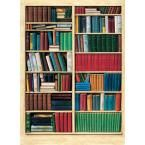 100 in. x 72 in. Biblioteque Wall Mural, Multicolor