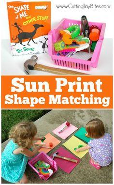 Sun Print Shape Matc