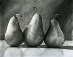 charcoal still life, pears