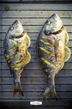  Cookery  // Food // // krewimleko // // cukiniowe-placuszki // // krewimleko // KREW I MLEKO Gefilte Fish Recipe, Ono Fish Recipe, Parmesan Fish Recipe, Fluke Recipe, Stir Fry Potatoes, Dorado Fish, Walleye Fish Recipes, Cooked Carrots, Pisces
