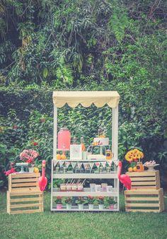 blog do math lemonade stand flamingo party festa infantil barraca limonada blog brasilia