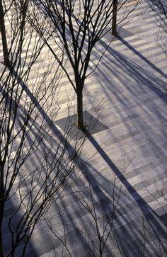 KEYAKI HIROBA PLAZA - PWP Landscape Architecture