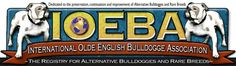 The World's #1 Association & Registry for Olde English Bulldogges and other Bully Breeds.  Featuring breed history, origins, registration information and breed standards.