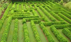 """Hawaii.  """"The world's second largest permanently planted maze. Covering an area more than the size of a football field, it consists of thousands of mock orange bushes planted in a regular array of hedge work. With lots of false turns and only one correct path, this maze is fun for young and old alike. The hedge is kept to a height of five feet, so as to allow adults to see over the hedges if necessary, but still allow everyone to wander the paths to find their way to the only correct exit."""""""