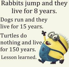 Funny Facts Humor Minions Quotes 28 Ideas For 2019 Really Funny Memes, Stupid Funny Memes, Funny Relatable Memes, Funny Love, Funny Texts, Epic Texts, Funny Sarcastic, Funny Humor, Sarcastic Quotes